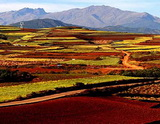 6 Days Yunnan Photo Tour, Dongchuan and Luoping