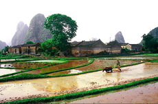 Yangshuo Countryside Photo
