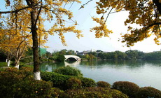 Guilin Student Tour Package