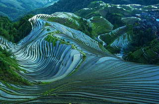 Longji Rise Terraced